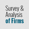 Survey and Analysis of Firms